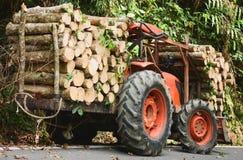 Orange traktor eller lastbil som laddar trä i skogen, nytt tränaturligt som sågas arkivfoton