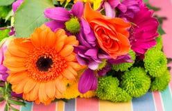 Orange Transvaal-Gänseblümchen und stieg mit bunten Floristenblumen Stockfotografie