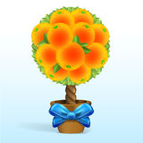 Orange tree with blue bow Stock Photography