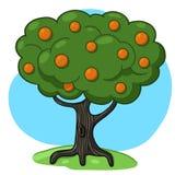 orange tree för illustration Arkivfoto