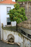 Orange tree and fountain in Alfama Royalty Free Stock Image