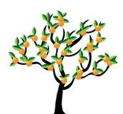Orange tree. Isolated on white background stock illustration