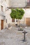 Orange Tree in Juan de Valencia Square, Ubeda. Andalusia, Spain Royalty Free Stock Image