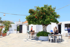 Orange tree at the Monastery of Kalopetra in Rhodes Royalty Free Stock Image