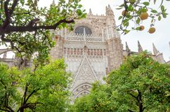 Orange trees around 16th century Seville Cathedral in Andalusia, Spain stock photo