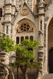 Orange trees in front of the Gothic Cathedral of Saint Bartholom Royalty Free Stock Image