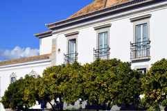 Orange trees outside historical houses in old town Faro Royalty Free Stock Photos