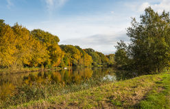 Orange trees at the river banks in autumn Stock Images