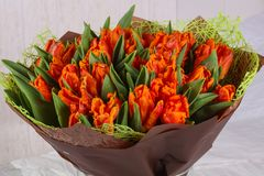 Orange tulips bouquet. Young spring flowers stock photos