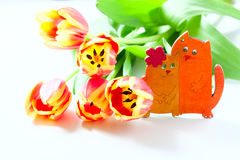 Orange tulips and cat kittens love heart valentine romance on white background. Royalty Free Stock Image