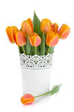 Orange tulips in flowerpot Royalty Free Stock Photography