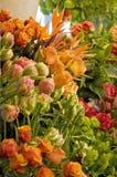 Orange tulips in flowershop Stock Images