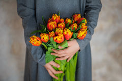 Orange tulips in girls hands. Beautiful orange tulips in girl's hands. Girl in grey dress with flowers. Place for text Stock Photos