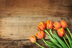 Orange Tulips over Wood Table Top Royalty Free Stock Photo