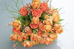 Orange tulips, roses, broom in spring flowers bouquet Stock Image
