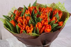 Orange Tulpeblumenstrauß Lizenzfreies Stockfoto