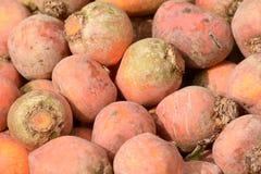 Orange turnips for sale at market stall Stock Image