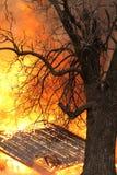 Orange u. gelb, Farben einer intensiven brennenden Flamme Lizenzfreie Stockbilder