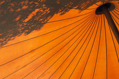 Orange umbrella background. Striking orange background made of giant umbrella and silhouetted foliage Royalty Free Stock Images