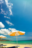Orange umbrellas and chairs Stock Images