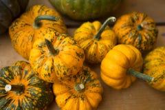 Orange und grüner Kürbis-Dekor Lizenzfreie Stockfotografie