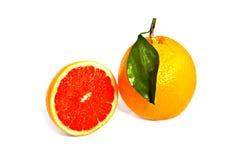 Orange und Pampelmuse Lizenzfreies Stockbild