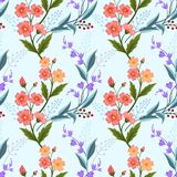 Orange und purpurrote Blumen auf hellblaue Farbnahtlosem Muster stock abbildung