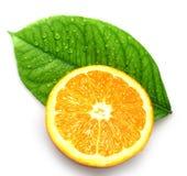 Orange und Urlaub mit Tropfen stockbild