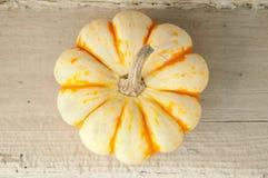 Orange und weißer Kürbis Stockfotografie
