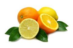 Orange und Zitrone Stockbild