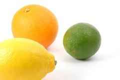 Orange und zitronengelbe Frucht der Zitrone Stockfoto