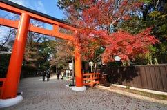 Orange valvgång för turistbesökShimogamo relikskrin i Kyoto, Japan Arkivfoton