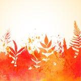 Orange vattenfärg målad höstlövverkbakgrund Arkivbild