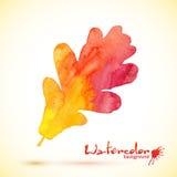 Orange vattenfärg målat vektorekblad Fotografering för Bildbyråer