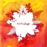 Orange vattenfärgbakgrund med vita sidor Fotografering för Bildbyråer
