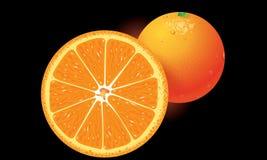 Orange vector Stock Photography