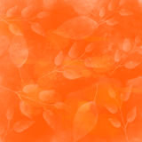 Orange vector autumn background with leaves Royalty Free Stock Image