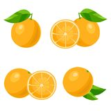 Orange. Vector Royalty Free Stock Photos