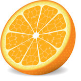 orange vektor Arkivbild