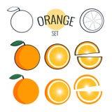 Orange Vektorsatz Illustration auf Weiß, flaches Design der Karikatur Lizenzfreies Stockbild