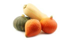 Orange, vert et un potiron de butternut Photographie stock libre de droits