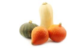 Orange, vert et un potiron de butternut Photos libres de droits