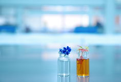 Orange violet flower and vial with science laboratory background. Orange violet flower and two vial with science laboratory background Stock Photo