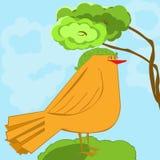 Orange Vogel auf Gras Lizenzfreie Stockfotos