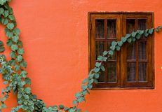Orange wall Stock Photography