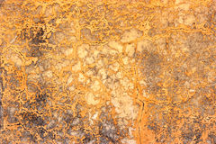 Orange wall texture Royalty Free Stock Image