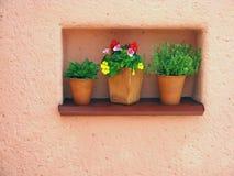 Orange Wand und Blumen Stockbild
