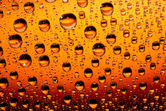 Orange water drops Stock Image