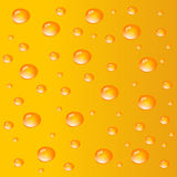 Orange water drops bubbles Stock Image