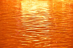 Orange water ripple. Stock Photos